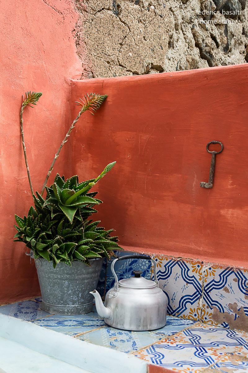 particolare pianta esterna casa vacanze - alicudi